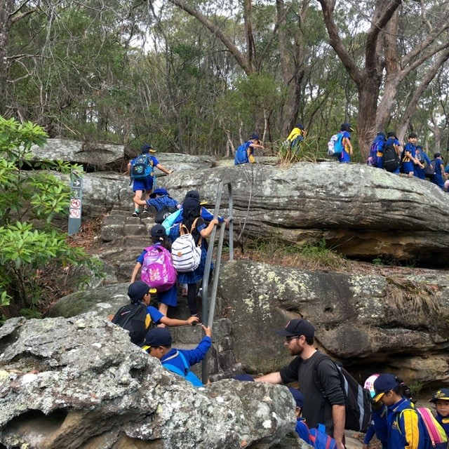 students walking up rock stairs to enter into bushland