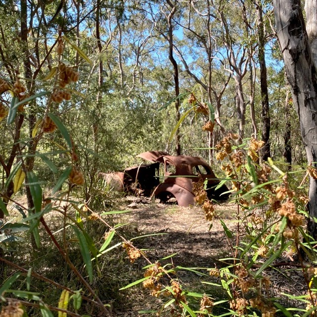 a bushland site with an old abandoned car that could be used as a site for learning