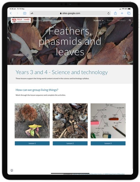 Screenshot from ecosystem feathers, phasmids and leaves resource website.