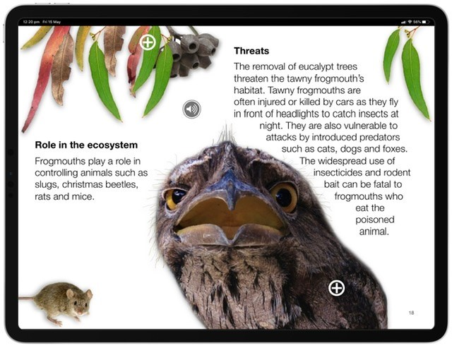 Screenshot of the Eucalypt Forest Multi-Touch Book.