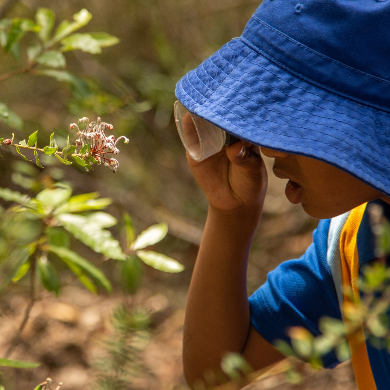 student using a magnifier to look at a flower