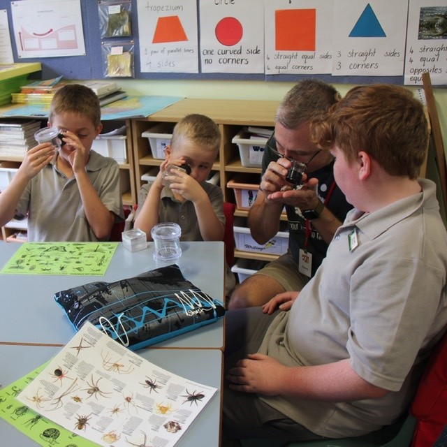 Students using magnifiers to view their invertebrates.