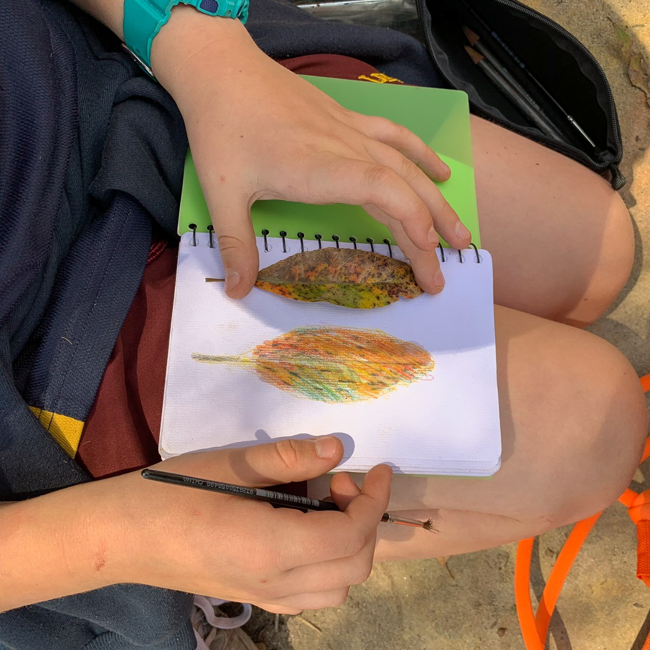 student drawing a watercolour leaf