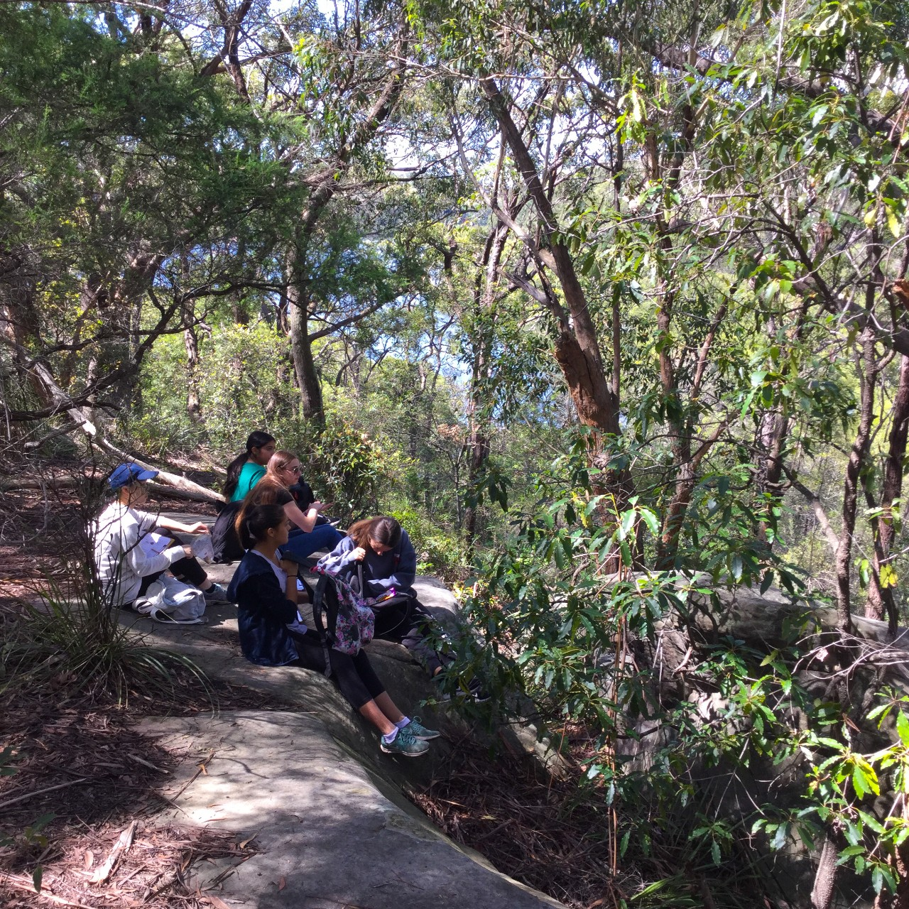 students sitting on a rock in the bush
