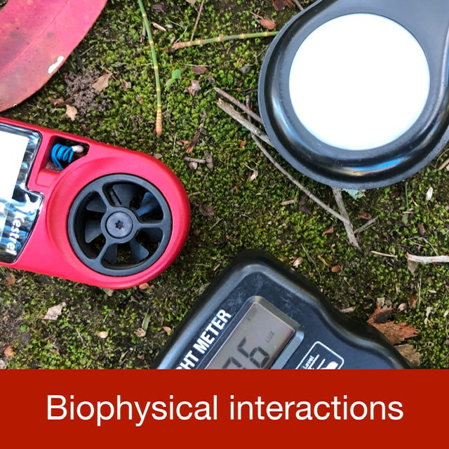 Biophysical interactions link