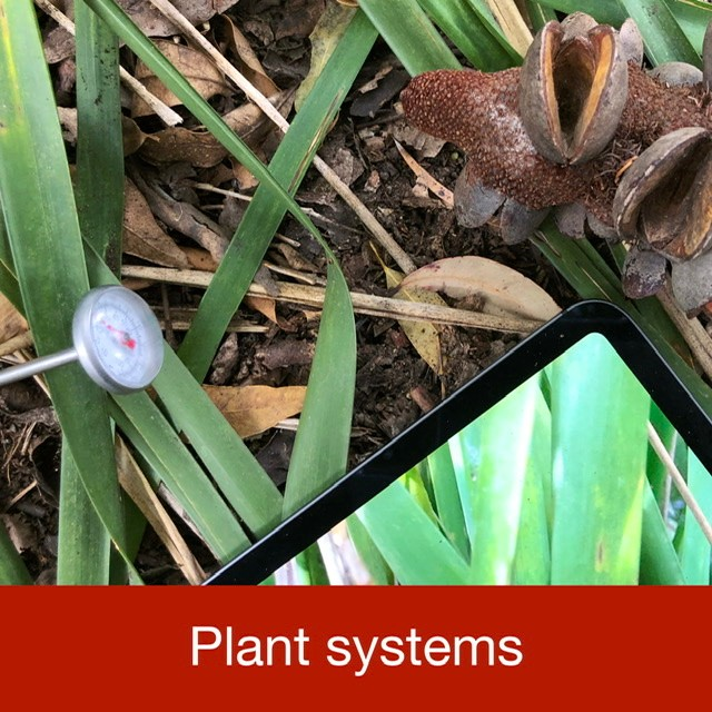 Plant systems link