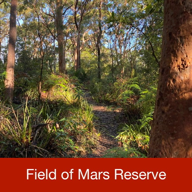 Field of Mars Reserve link